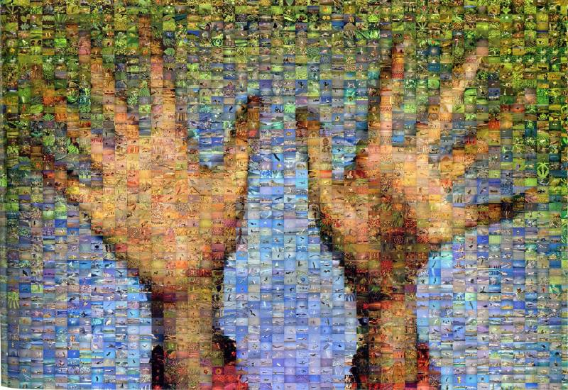 Hands, Robert Silvers (2002)