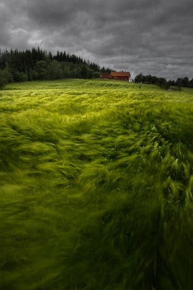 A Norwegian Wave, Andy Astbury (2011, British)